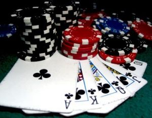 Казино оазис на ростове слотоферма игровые автоматы казино играть