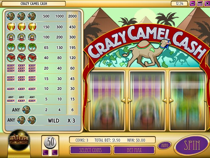 Camel cash casino gambling poker professional society